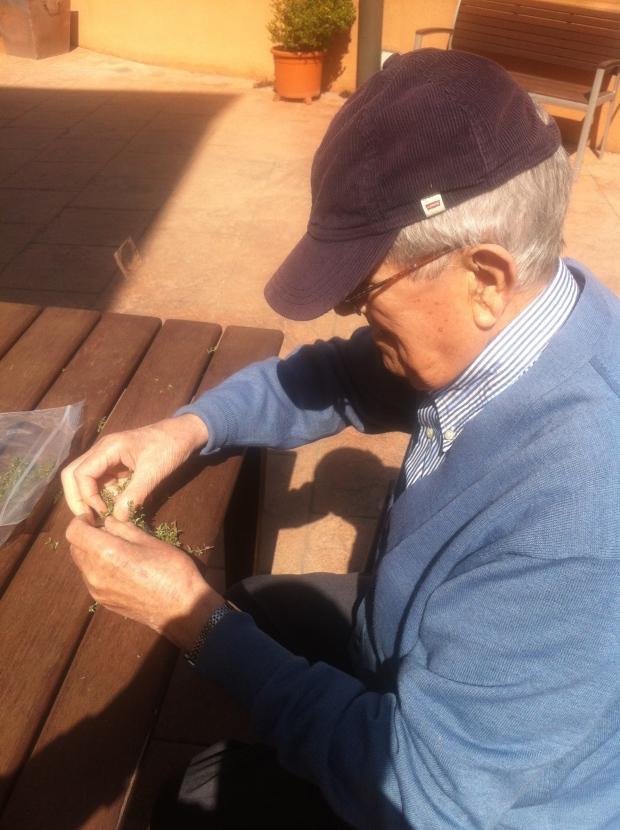 Ignacio aplicado ensobrando tomillo en los sobres de celofán